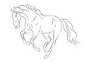 Running andalusian horse sketch Stock Photography