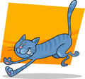Running blue tabby cat Stock Photo