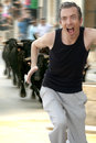 Running from the bulls! Royalty Free Stock Photo