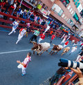 Running of the bulls san sebastian de los reyes spain august in august in san sebastian de los reyes spain traditional Stock Photos