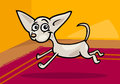 Running chihuahua cartoon illustration Royalty Free Stock Image