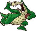 Running Gator Royalty Free Stock Photo