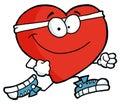Běh srdce