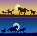 Running horses against a decline nights vector images of on yellow violet background of with the sun on dark blue background of Stock Images
