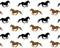 Running horses seamless repeating pattern of on a white background Stock Image