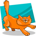 Running red fluffy cat Stock Photo