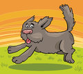 Running shaggy dog cartoon illustration Stock Photography