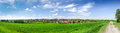 Rural beauty spring landscape with green grass village road and clouds Royalty Free Stock Photo