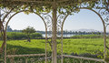 Rural countryside view of a river in summer through trellis Royalty Free Stock Photo