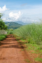Rural dirt road and green meadow on long way Royalty Free Stock Photo