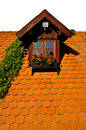 Rural dormer window on roof flowers and creeper plant view with geranium sky isolated Stock Image