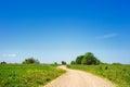 Rural expanse dirt road between green hills Stock Photography