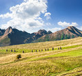 Rural fields near the high mountains composite landscape image lonely tree haystacks on at foot of tatra Stock Images