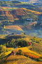 Title: Rural houses and autumnal vineyards in Piedmont, Italy.