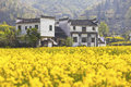 Rural houses in wuyuan jiangxi province china it is a landscape Royalty Free Stock Images