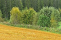 Rural landscape in autumn finland Royalty Free Stock Photos