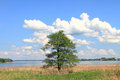 Rural landscape at Chiemsee lake Royalty Free Stock Photo