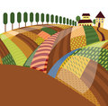 Rural landscape the color illustration Stock Image