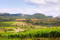 Rural landscape in la rioja summer day spain Royalty Free Stock Image