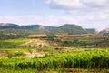 Rural landscape in la rioja summer day spain Royalty Free Stock Image