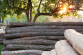 Rural landscape - a pile wood at sunset Royalty Free Stock Photos