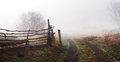 Rural landscape with road and fence Royalty Free Stock Photo