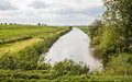 Rural landscape with a small stream Royalty Free Stock Photo