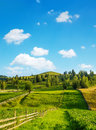 Rural landscape in summer with scattered trees and wooden fence ghimes transsylvania romania Stock Photos