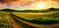 Rural landscape sunset panorama Royalty Free Stock Photo