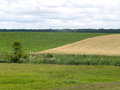 Rural landscape with two fields Royalty Free Stock Photo