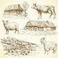 Rural landscape, village, farm animals Royalty Free Stock Photography