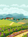 Rural landscape with vineyard and mountain panoram Stock Photography