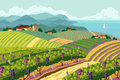 Rural landscape with vineyard and mountain and sea panoram Stock Photos