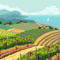 Rural landscape with vineyard and mountain and sea panoram Royalty Free Stock Images