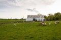 Photo : Rural Livestock Farm on  piglet