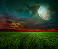 Rural night with moon Royalty Free Stock Photography