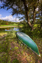 Rural pond in texas tranquil on a sunny summer morning Royalty Free Stock Images