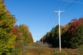 Rural power lines Royalty Free Stock Photo
