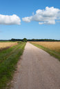 Rural road. Royalty Free Stock Photography