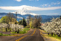 Rural road, apple orchards, Mt. Hood Stock Photography
