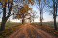 Rural road in autumn. Royalty Free Stock Photography