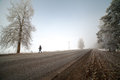 Rural road in cold and misty morning Royalty Free Stock Photos
