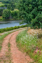 Rural road a dirt running along a river and bordered with wild flowers Royalty Free Stock Photography