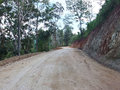 A rural road through a forest in northern of thailand Royalty Free Stock Photography