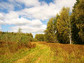 Rural road near the forest in the central part of russia sunny day a birch forest the blue sky with clouds Royalty Free Stock Photo