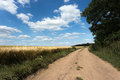 Rural road summer landscape photo Stock Photography