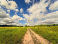 Rural road to summer day Royalty Free Stock Photography