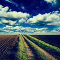 Rural road trough fields of arable land Stock Image