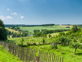 Rural scene with gardens green wheat field and under blue sky Royalty Free Stock Image