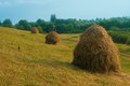 Rural scene in ukraine misty morning in summer haystacks in the field Royalty Free Stock Photos